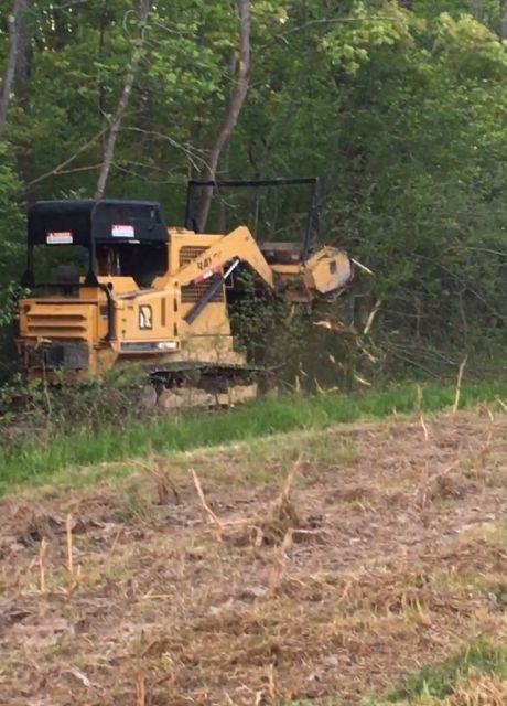 On-Site Technical Serivces | Vegetation Management